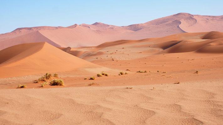 wunderschöne Dünenlandschaft der Namib
