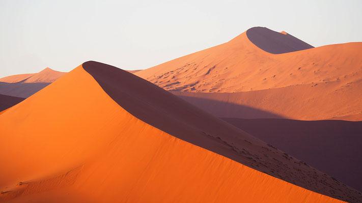 die Dünen sind einer stetigen Veränderung unterworfen
