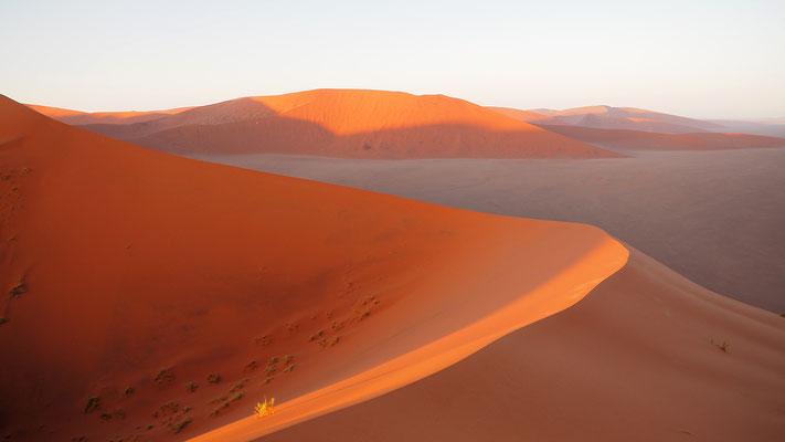 """auf der """"Dune 45"""", keine große Düne, für viele bereits eine Herausforderung"""