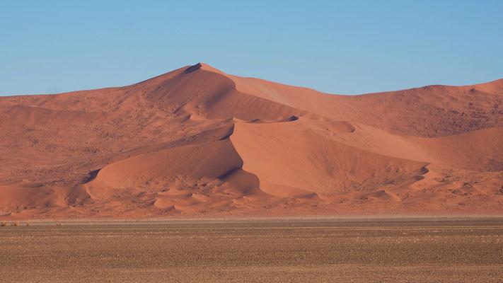 am Weg nach Sossusvlei sollen sich die höchsten Dünen der Welt befinden