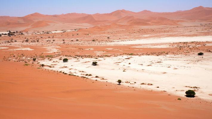 in den Salzpfannen ist es angenehmer zu gehen als im weichen Wüstensand
