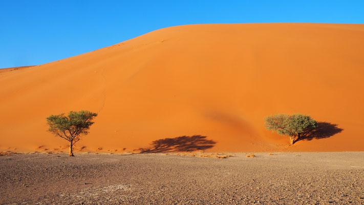 die Dune 45 von unten