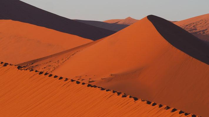 auf den Dünen ist das Spuren unglaublich mühsam