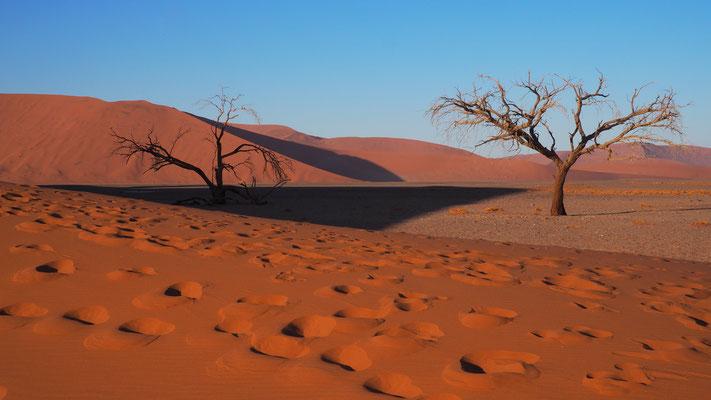 Namibia, Namibwüste (Dune 45)