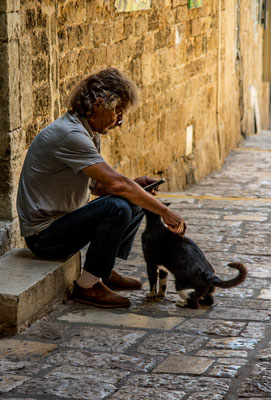 man with cat, yafo, israel