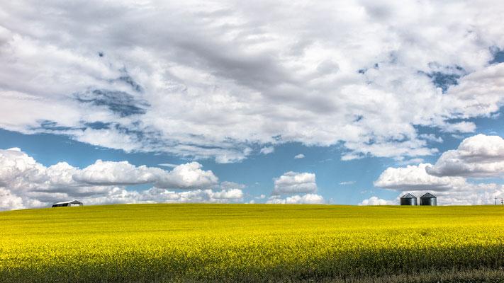 the big sky I, hwy 89, montana
