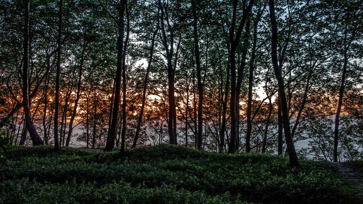 Baltic Sunset, Светлогорск (Rauschen), Kaliningrad Oblast, Russia