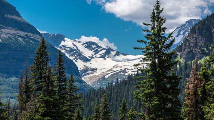 jackson glacier ( remains ), glacier national park, montana