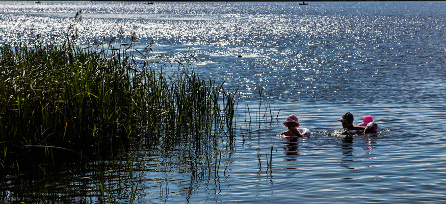 Summer, Plinkšės Lake, Lithuania