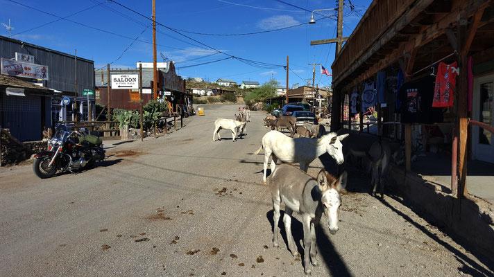 main road, oatman, route 66, arizona