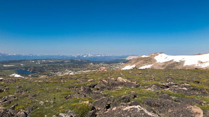 beartooth pass summit, wyoming