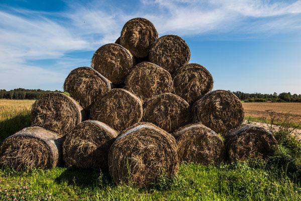 Haystacks, Ruba Pagasts, Latvia