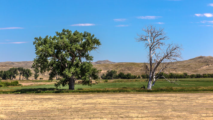 """""""new and old"""", near leiter, wyoming"""