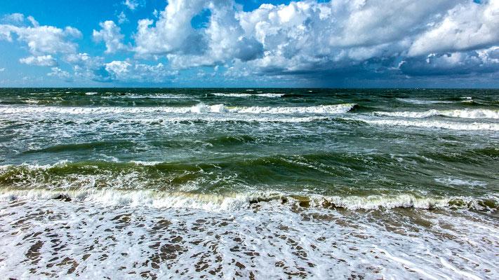 Baltic Shore, Куршская коса (Kurische Nehrung), Kaliningrad Oblast, Russia