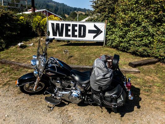 """ got weed?"", oregon-california border"