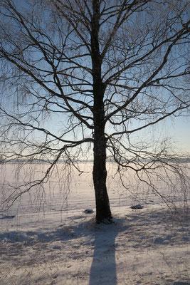 Winter in Ezere Pagasts, Kurzeme, Latvia