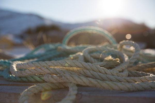 Seile im Gegenlicht