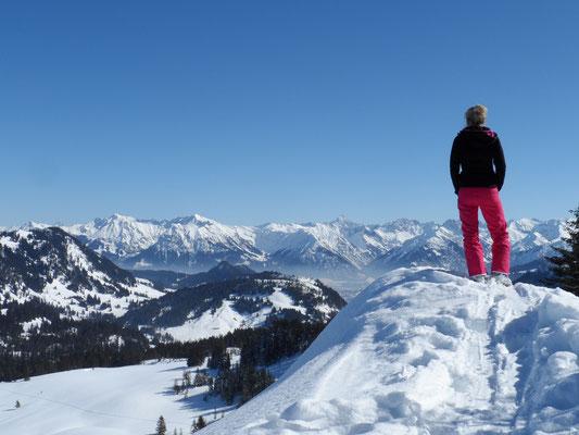 Ausblick vom Piesenkopf bei Oberstdorf