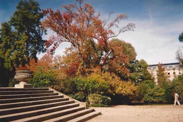 Jardin publique Bordeaux