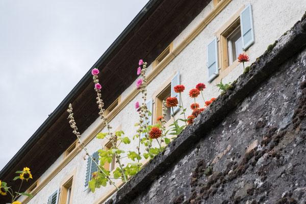 Posten_03_Colette Flück