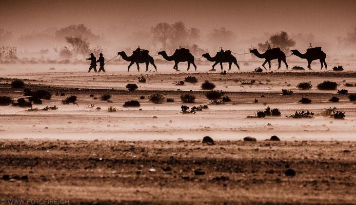 Foto: Stefan Jallard...Wüstentrip Chegaga