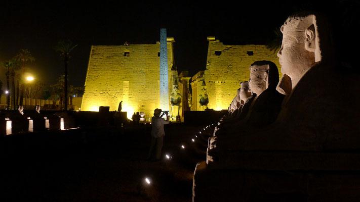 Foto: Arno Kloiber...Luxor