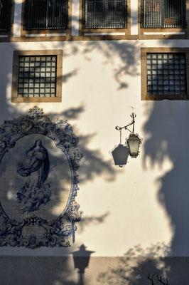 Spring Sabine - Licht und Schattenspiel