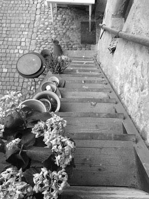 16 Zurueck in das Gaessli.jpg