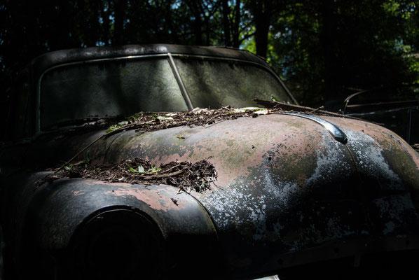 Foto: Arno Kloiber...Autofriedhof Kaufdorf
