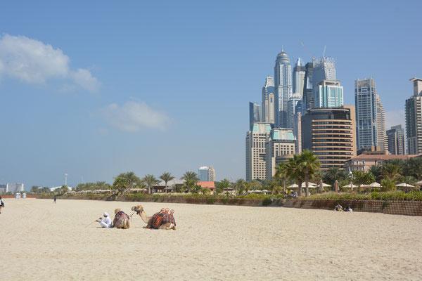 Foto: Werner Santschi...Dubai