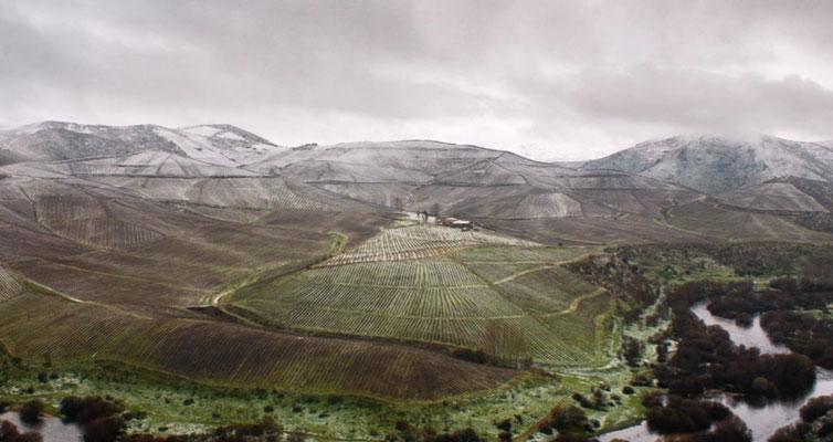 Reise am Douro / Jaime Abrunhosa