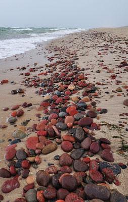 Strand bei Swetlogorsk (dt.: Rauschen), Russland - Kaliningrad, 2011