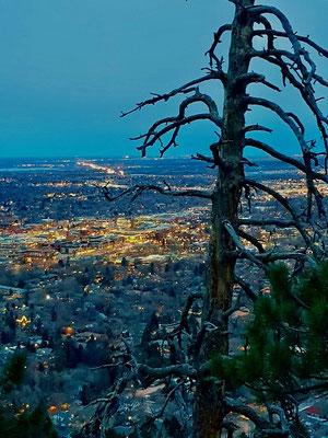 Boulder, Colorado, USA (2020)