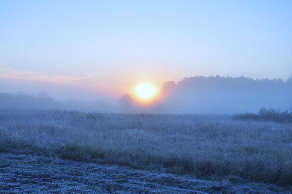 Erster Frost in Masuren, Polen, 2012