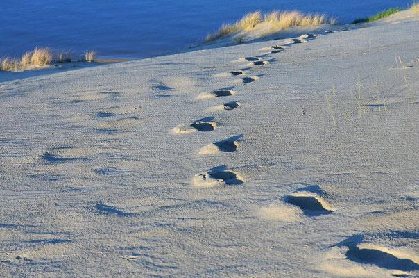 Fußspuren auf der Kurischen Nehrung (Litauen)