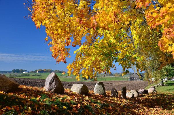 Herbst bei Paprotki - Masuren (Polen)