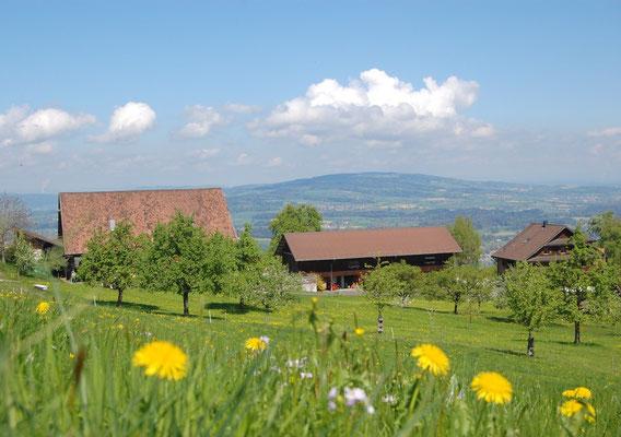 Bauernhof Michaelskreuz