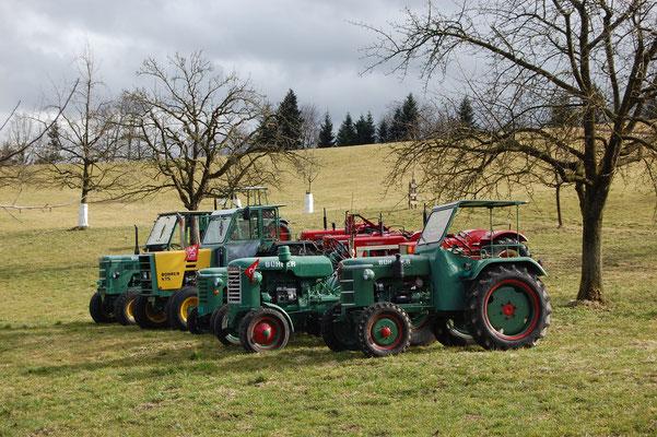 Traktoren Oldtimertreffen