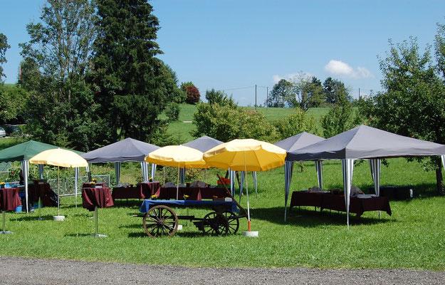 Apéro auf unserer Wiese (Zelte zugemietet)