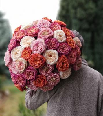 Dicker Rosenblumenstrauß -einmalig- 55 Seidenblüten 1A Qualität Durchmesser ca.65cm € 275,00