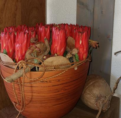 Protea im Bambustopf Höhe u.Durchmesser ca.36cm komplett € 149,00