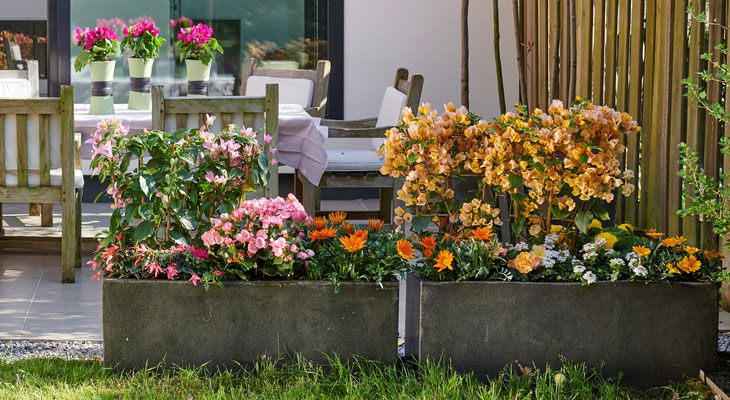 tollwasblumenmachen - Blumenkübel