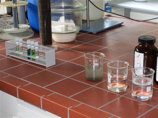 Untersuchung des gereinigten Wassers im eigenen Labor
