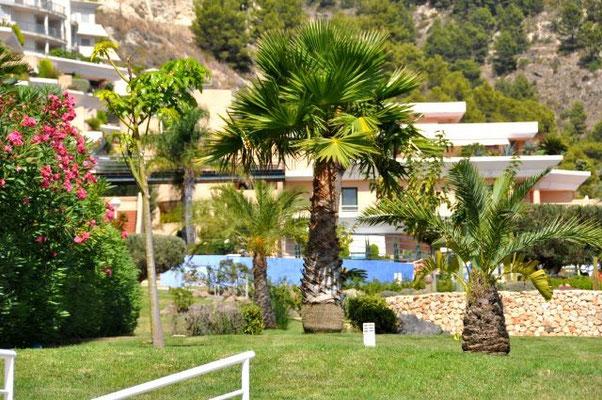 Rent-a-House-Spain, Costa Blanca, Altea, La, Vella, Albir, Benidorm, Calp(e), Alfaz del Pi, pool, luxury, golf, sea, beach, dishwasher, Dutch satellite TV