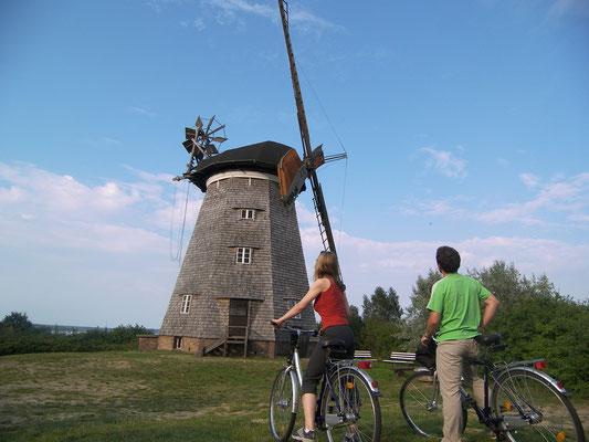 Die schöne Insel Usedom. Windmühle in Benz  Foto: ©UTG