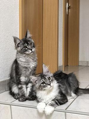 Preston et sa soeur Paloma
