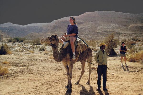 1993 Israel: Negev
