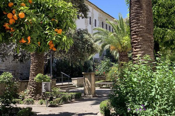 Baeza: auch ein maurisches Erbe Andalusiens sind die vielen Bitterorangen-Bäume