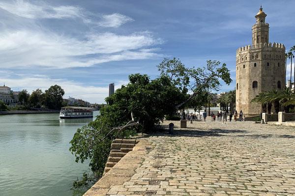 der Torre del Oro am Guadalquivir