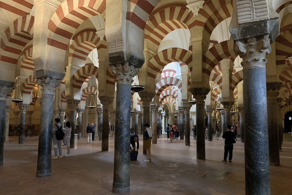 ein Wald aus 856 Säulen